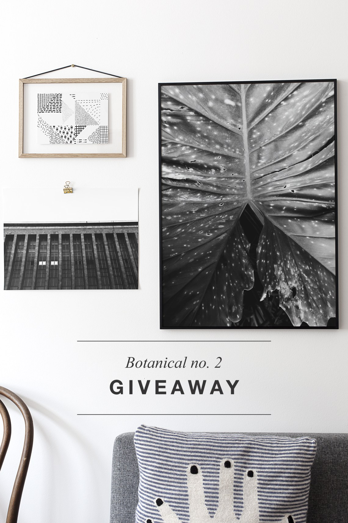 Giveaway - Botanical no.2 print