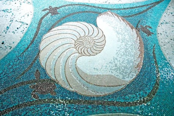 nautilus mosaic at CGR