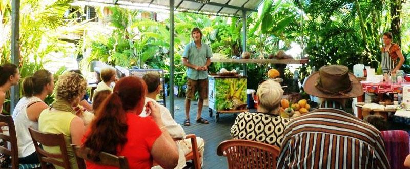 Mission beach Coconut talk