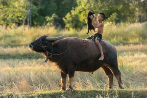 children-around-the-world-3