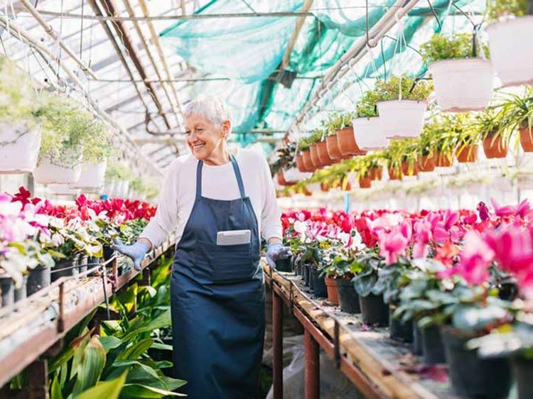 Best Jobs For Older People Monster