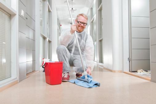 Cleaner Resume Sample  Template Monsterca