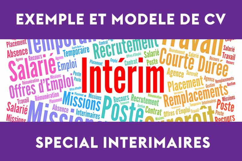 modele cv mission interim