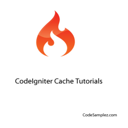 How To Work With Codeigniter Caching In PHP