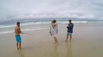 pesca-drones
