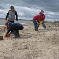 Mersea Island - the forgotten beach?