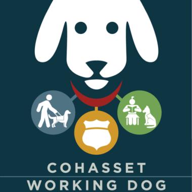 CWDF-logo_png copy