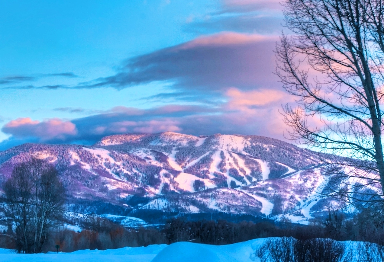 Fall Aspens Wallpaper Snow Days Sleds And Vintage Skis Co High Country