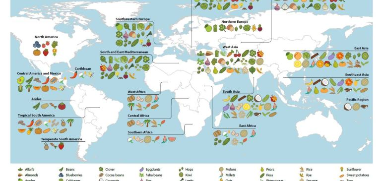 Cold Chain Quickie #26- Where Do India's Food Crops Actually Come From?