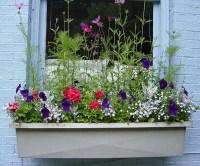 Window Box Flower Ideas | Car Interior Design