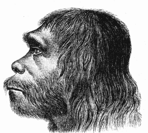 Story of Cosmetics 01 - Neanderthals 3