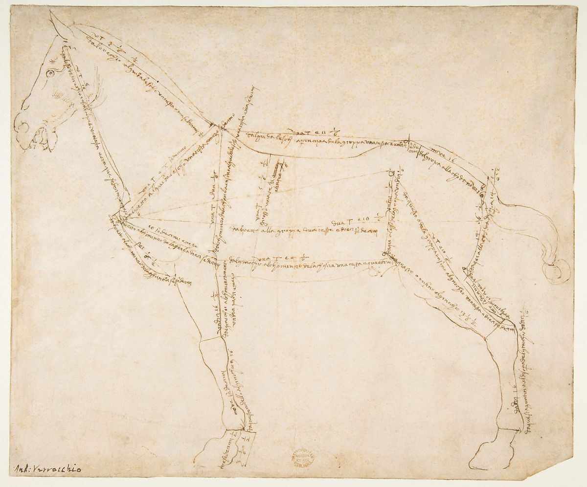 Pittura Termica Toscano Andrea Del Verrocchio Measured Drawing Of A Horse Facing Left
