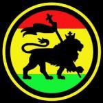 circle lion