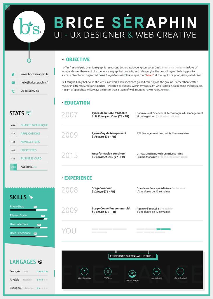 Making a Visual Resume u2013 College Magnified - visual resume templates