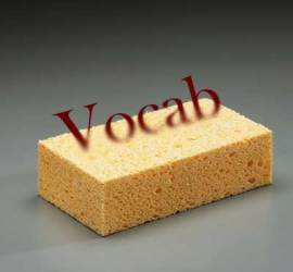 Vocab-Sponge