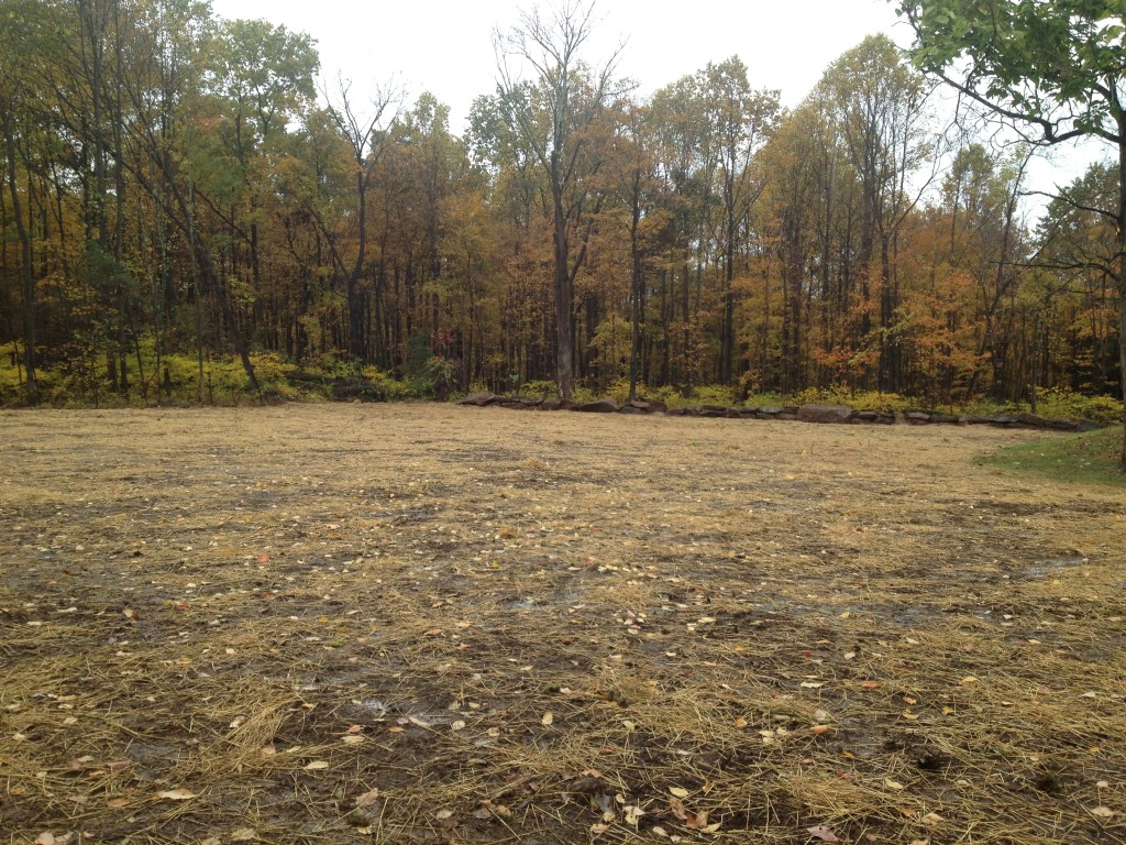 Land cleared and prepared for construction