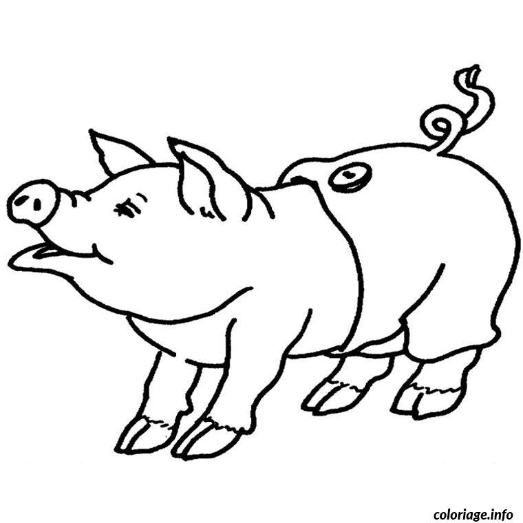 Coloriage Spider Cochon.Coloriage De Cochon A Imprimer Dessin De Coloriage Cochon Imprimer