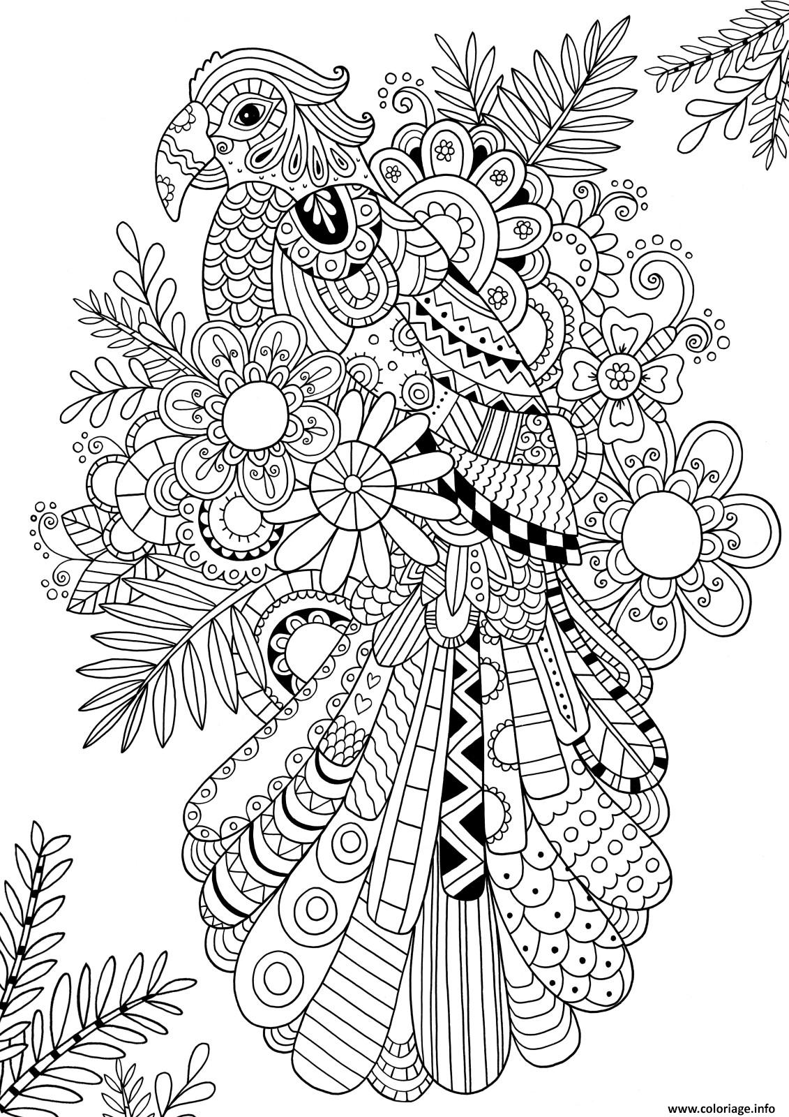 Dessin A Colorier Perroquet Coloriage Zentangle Perroquet Oiseau Adulte Dessin