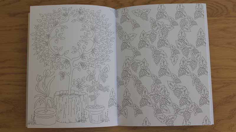 jardins-a-colorier-maud-taron-page-3