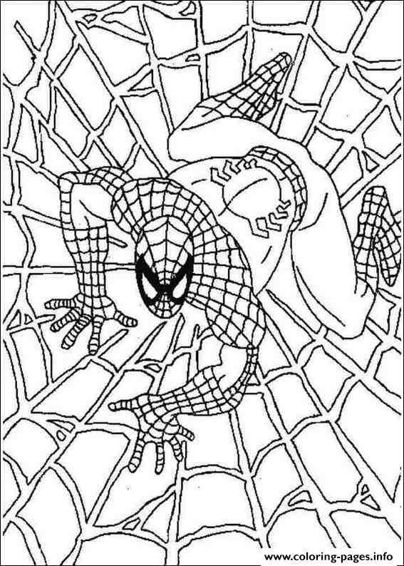 Spiderman Web S1bed Coloring Pages Printable