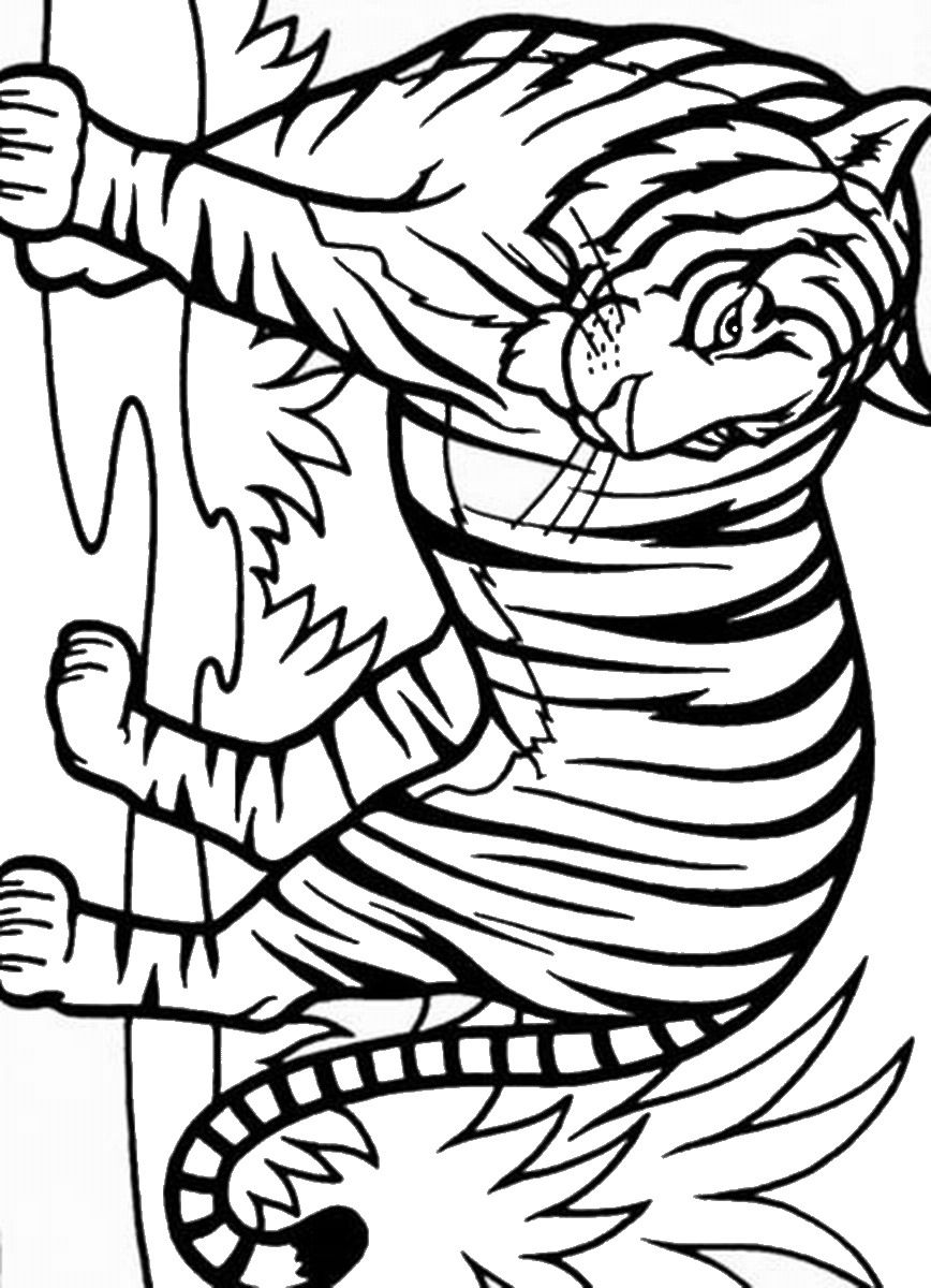tiger to color tiger coloring pages printable tiger color autotiger coloring pages