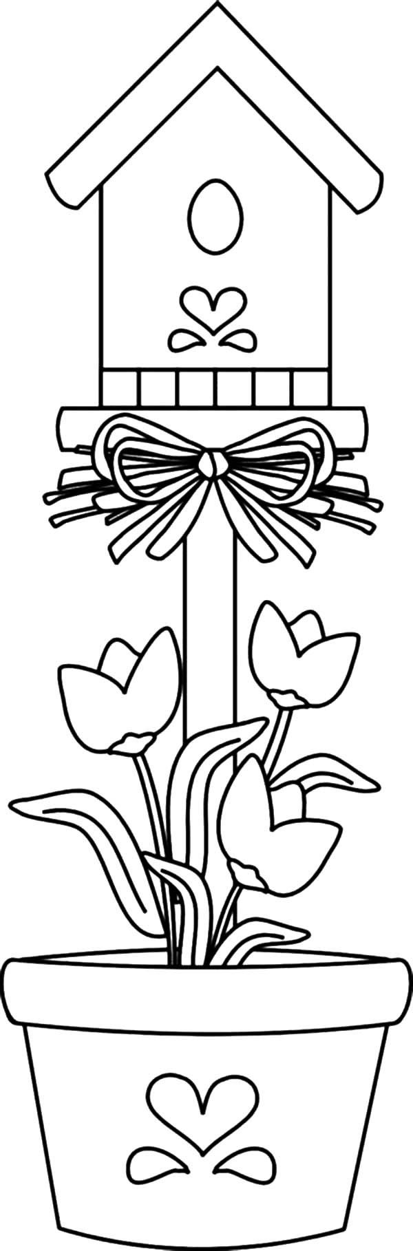 Coloring pages of bird houses high quality coloring pages