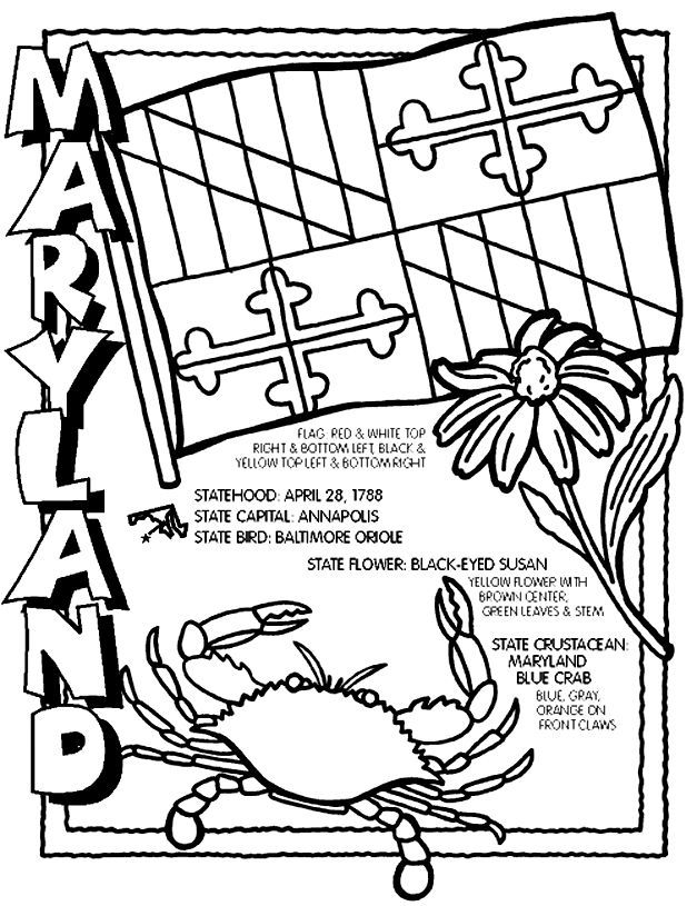 Maryland State Flag Coloring Page - Coloring Home