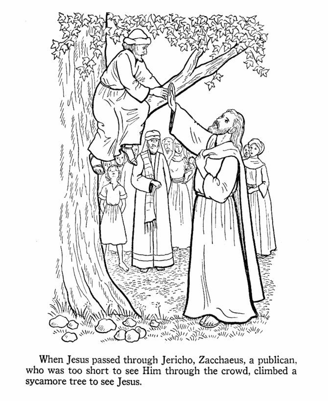 Zacchaeus Coloring Page Printable - Coloring Home