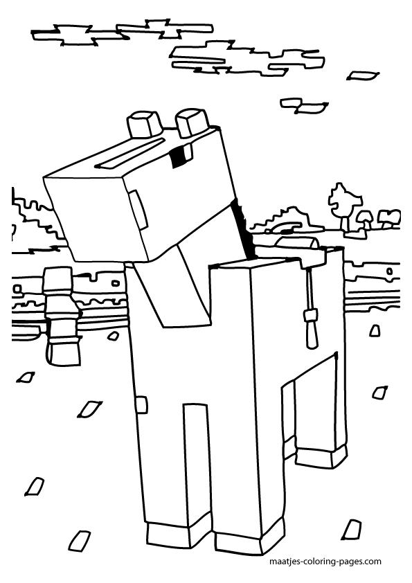 cat 5 Schaltplang house