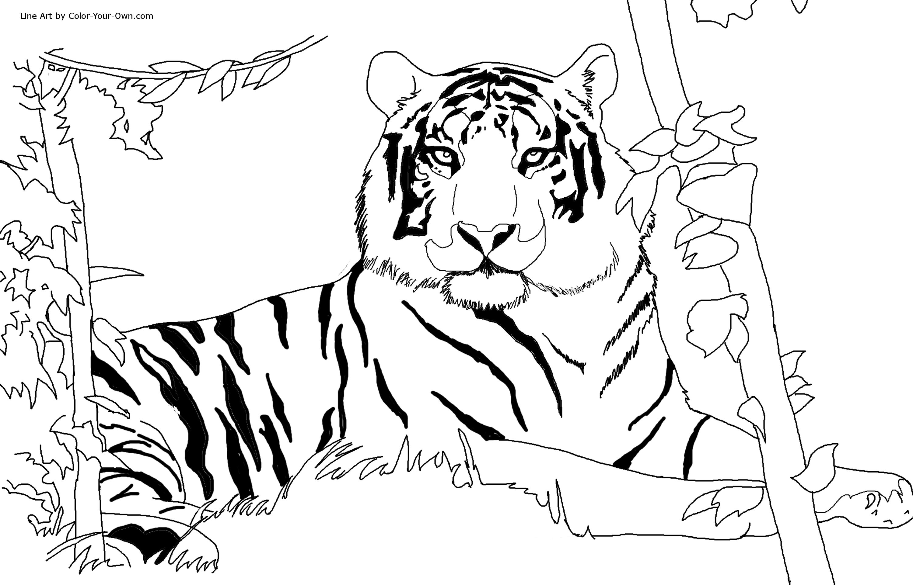 Coloring pages 8 1 2 x 11 - Coloring Pages 8 1 2 X 11 48