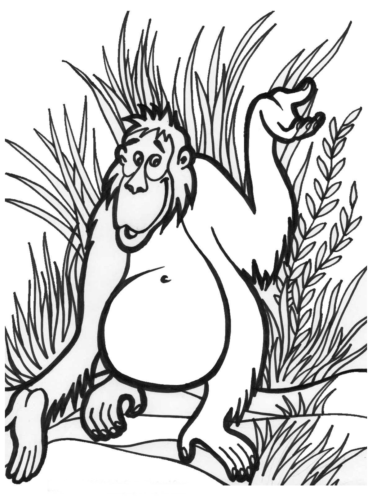 Jungle book coloring pages free -  Jungle Coloring Pages 7 Download