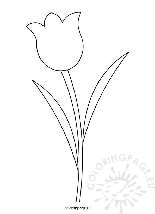 Tulip Flower Template Printable \u2013 Coloring Page