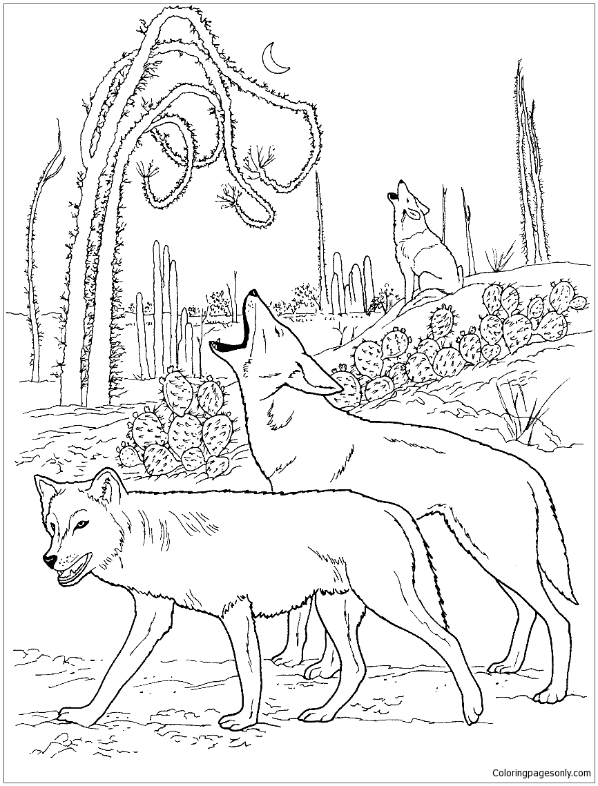 Desert Coloring Pages Printable. free free biome coloring