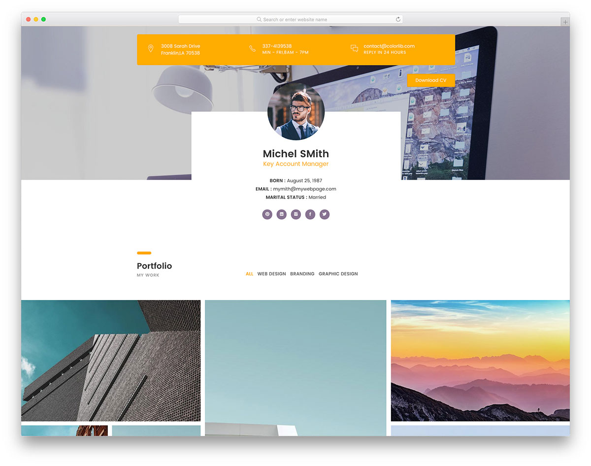 free wordpress theme cv