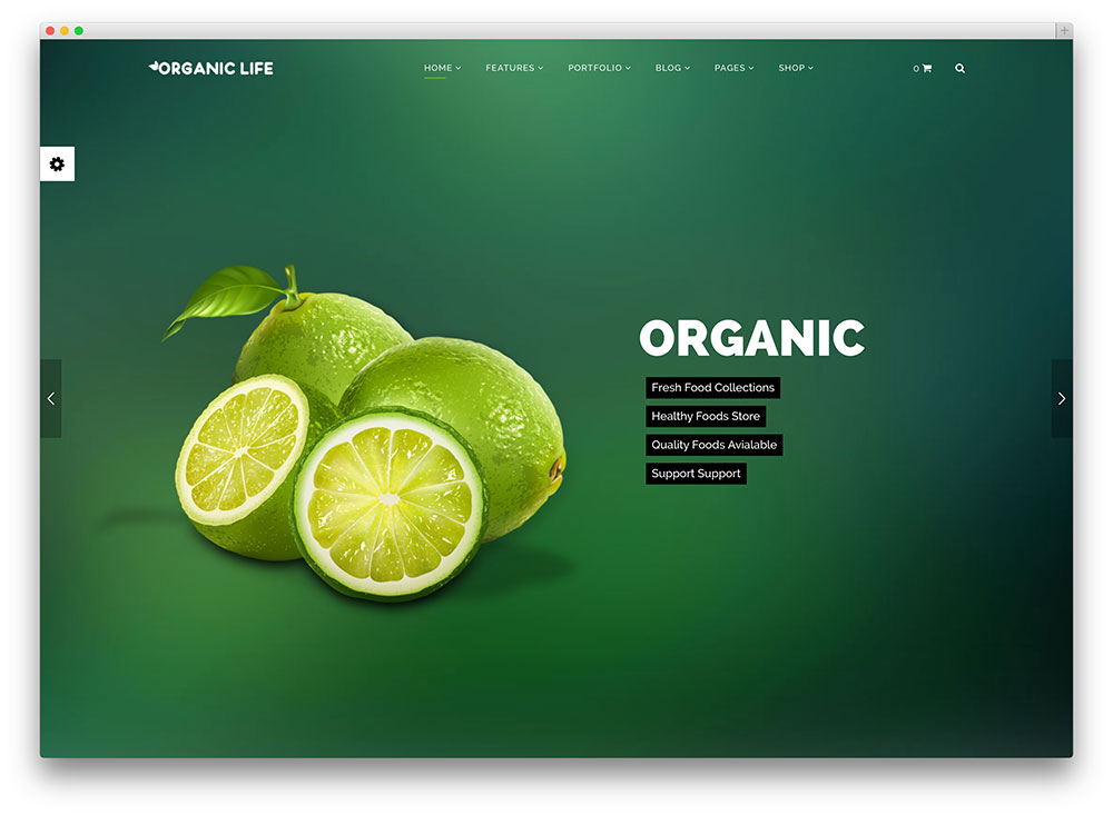 19 Green Eco-Friendly WordPress Themes for Green, Organic, Eco