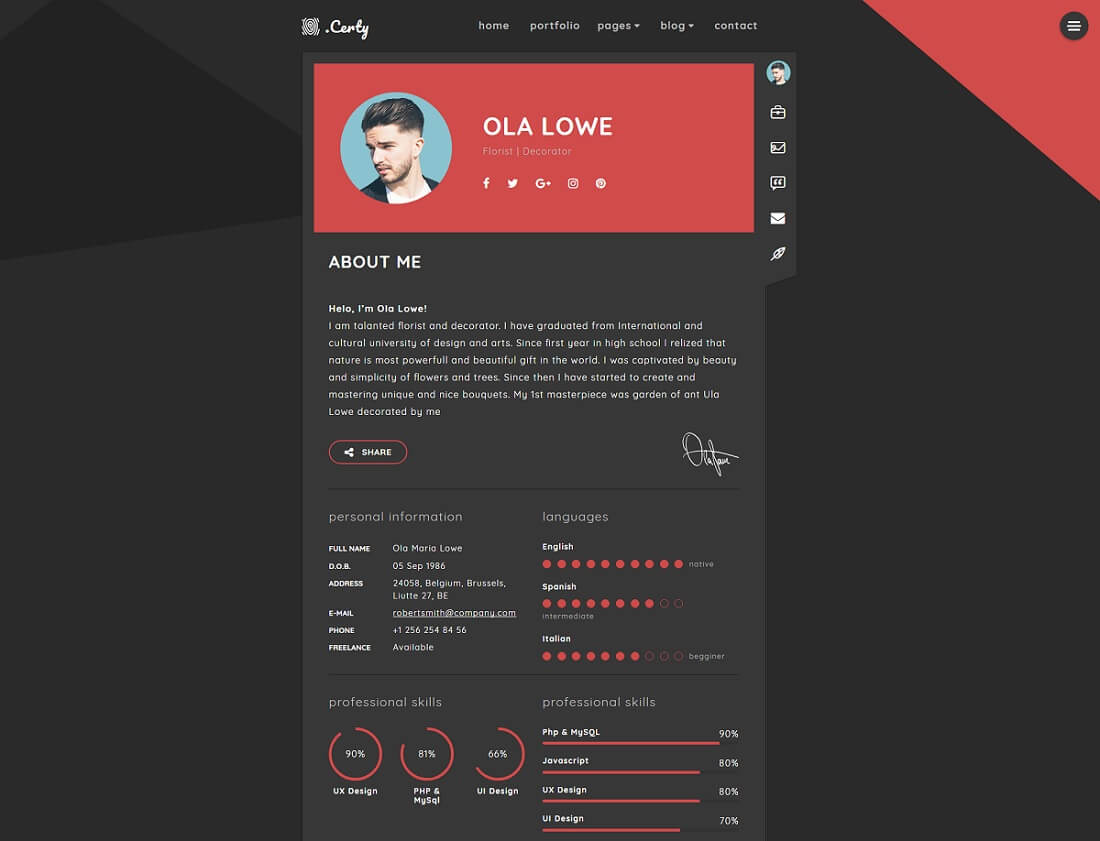 best cv website design