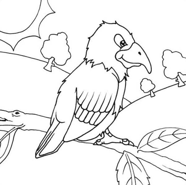 Parrot In The Forest Coloring Page - Download  Print Online