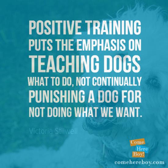 Positive Dog Training Books