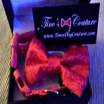 Fashion Friday: Tino's Dog Couture Dog Bow Tie & Collar Set Review