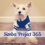 Pet Project 365 - 2014 ft