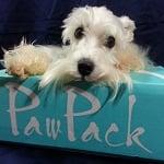 PawPack - Pet Subscription Box ft