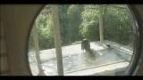 美女と温泉に入っている気分になる!?佐賀観光協会のPR動画