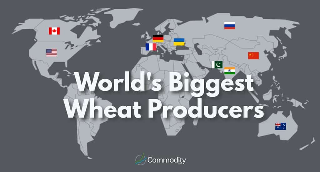 Wheat Learn How To Trade It at Commodity