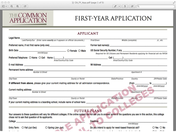Sample Paper Common App \u2013 Promoting College Access