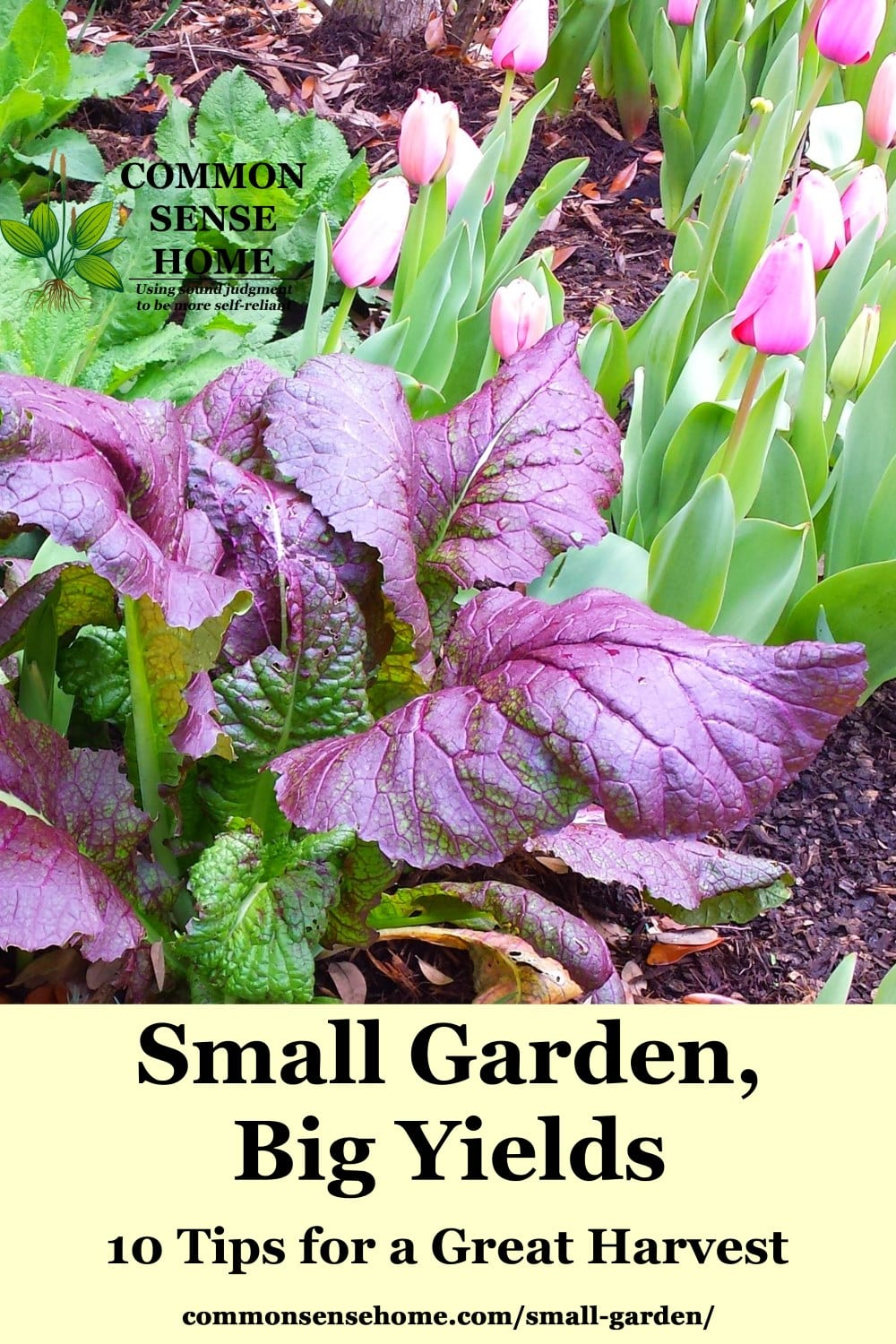 Home Garden Small Garden Ideas 10 Tips To Grow More Food In Less Space
