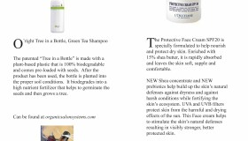 earth friendly beauty products