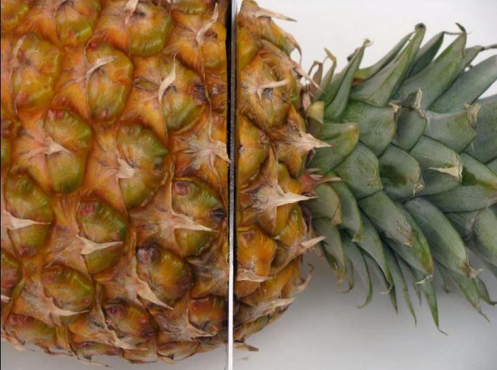 como plantar piñas - corte corona
