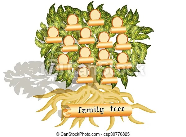 Family tree on white Family tree isolated on a white background