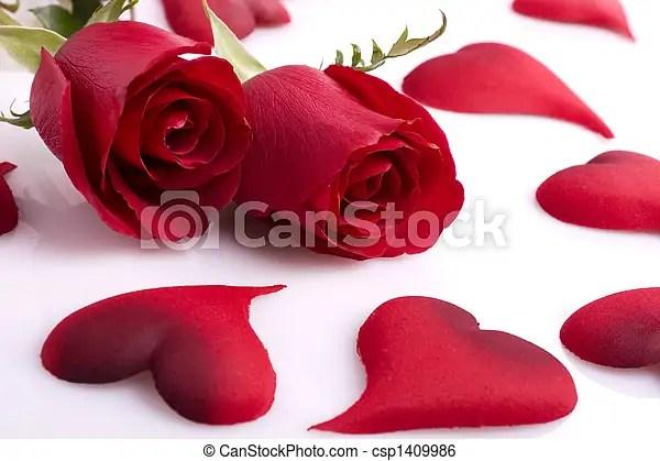 Rosas, y, corazones Hermoso, dos, rosas, plano de fondo, corazones - rosas y corazones