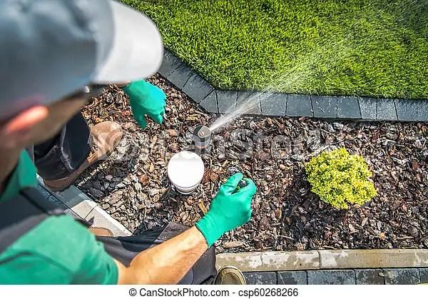 Adjusting lawn sprinkler by professional garden irrigation
